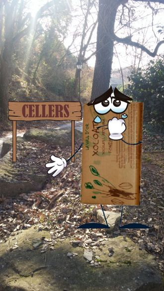 1.Cellers